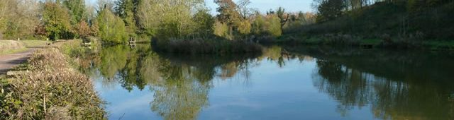 Dave Crooks Fishery at Hunstrete. Bridge Pooljpg