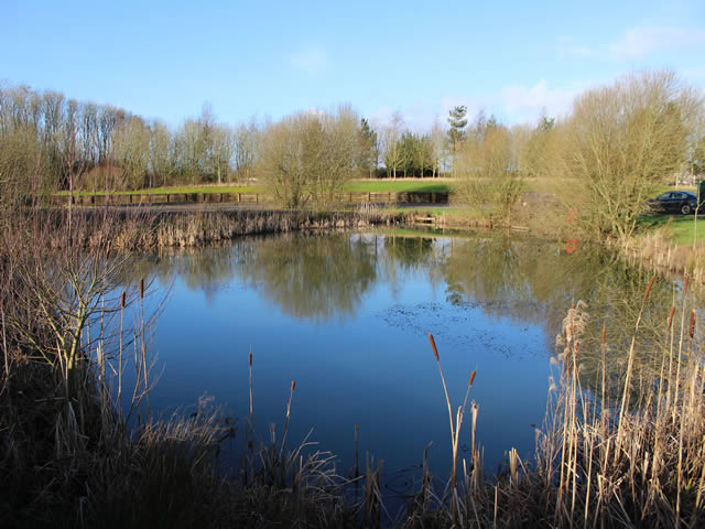 Lydes Farm Dragonfly Pond