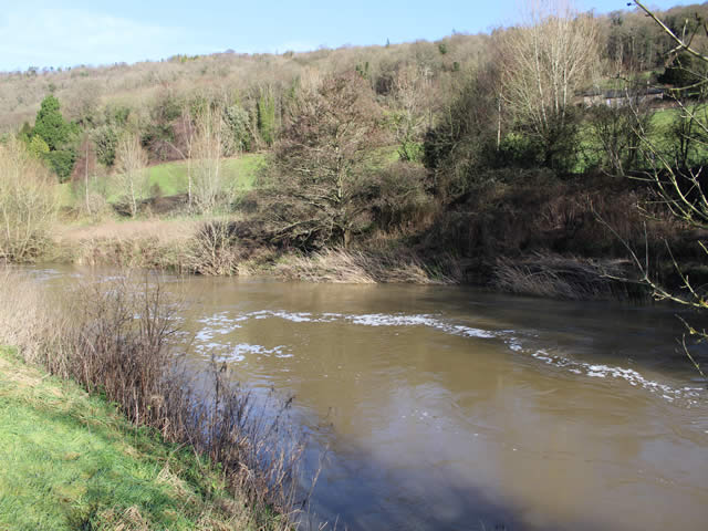 The Islands at Claverton River Avon Bathampton Angling Association