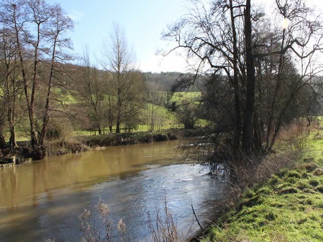 The Long Meadow River Avon Bathampton Angling Association